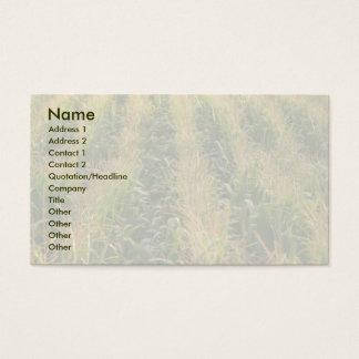 Cartão De Visitas Campo de milho