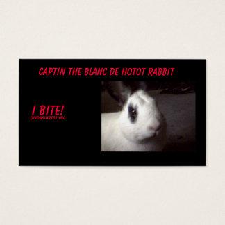 Cartão De Visitas captin001, Captin o Blanc De Hotot Coelho, I…