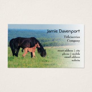Cartão De Visitas Cavalo e potro em um prado