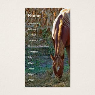 Cartão De Visitas Cavalo no por do sol
