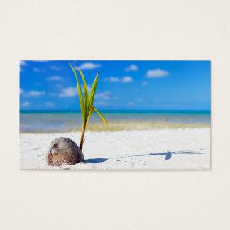 Cartão De Visitas Coco na praia