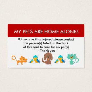 Cartão De Visitas Cuidado para minha informação de emergência dos