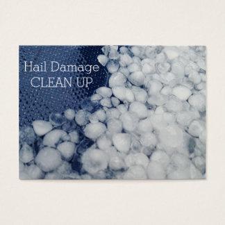 Cartão De Visitas Dano sazonal tormentoso da saraiva limpa