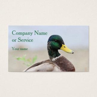 Cartão De Visitas Drake do pato selvagem
