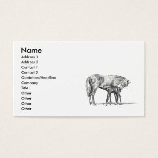 Cartão De Visitas Égua e potro
