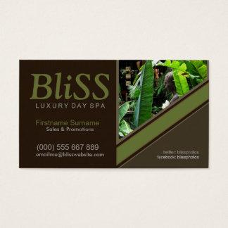 Cartão De Visitas Enterre o recurso de saúde dos termas da natureza