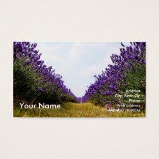 Cartão De Visitas Fileira do negócio Card2 da lavanda
