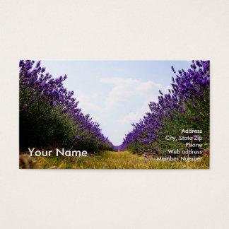 Cartão De Visitas Fileira do negócio Card_A da lavanda