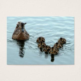 Cartão De Visitas Formação do pato