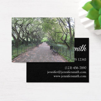 Cartão De Visitas Fotografia conservadora do Central Park NYC do