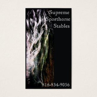 Cartão De Visitas Frisão místico