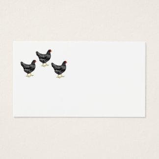 Cartão De Visitas Galinhas da raça da herança - galinhas poedeiras
