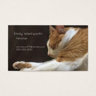 Cartão De Visitas Gato que dorme no sofá