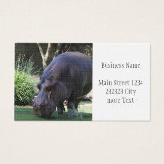 Cartão De Visitas Hipopótamo AJ17