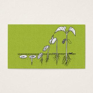 Cartão De Visitas Ilustração da germinação da planta