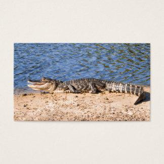 Cartão De Visitas Jacaré que expor ao sol no lago