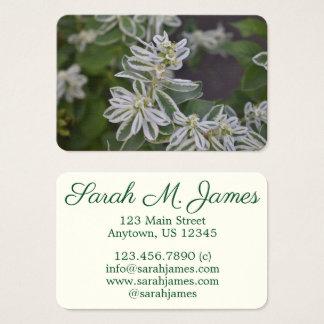 Cartão De Visitas Jardim floral verde bonito da samambaia das flores