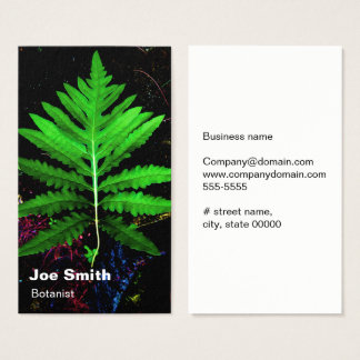 Cartão De Visitas Licença da samambaia sensível