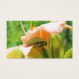 Cartão De Visitas Lírio de sorriso do rosa do sapo de árvore