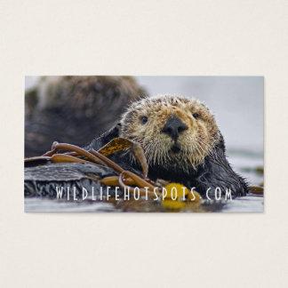 Cartão De Visitas Lontra de mar