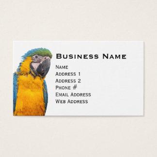 Cartão De Visitas Macaw do azul e do ouro