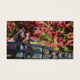 Cartão De Visitas Mãe e cavalo novo