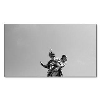 Cartão De Visitas Magnético Foto simples, moderna da gaivota sobre a estátua