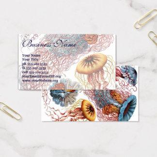 Cartão De Visitas Medusa por Ernst Haeckel, Discomedusae do vintage