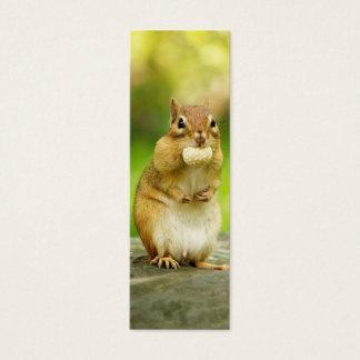 Cartão De Visitas Mini Chipmunk gordo com deleite