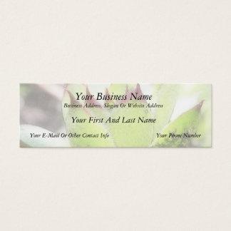 Cartão De Visitas Mini Houseleek - Sempervivum