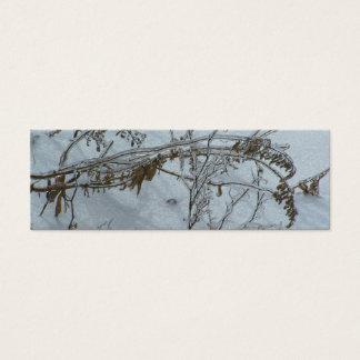 Cartão De Visitas Mini Marcador das reflexões do inverno
