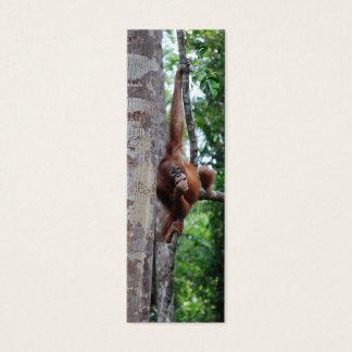 Cartão De Visitas Mini Marcador de Hugger da árvore dos animais selvagens