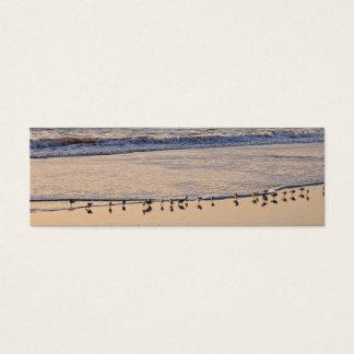 Cartão De Visitas Mini Pequeno almoço mordiscando dos gaiteiros da areia