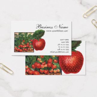 Cartão De Visitas Morangos do vintage, plantas de morango em uma