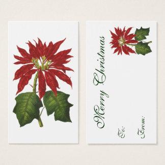 Cartão De Visitas Natal vintage, planta vermelha do inverno da