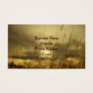 Cartão De Visitas Natureza