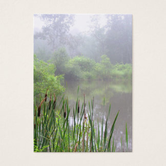 Cartão De Visitas Névoa da manhã no ATC da lagoa