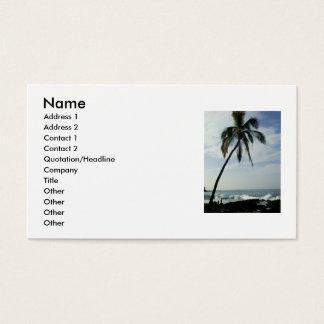 Cartão De Visitas Palmeiras