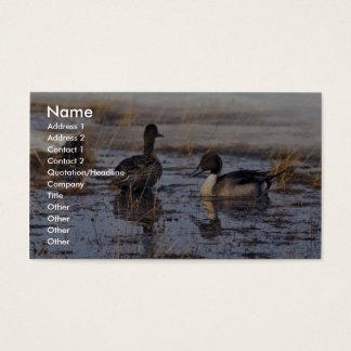 Cartão De Visitas Pares do pato do arrabio