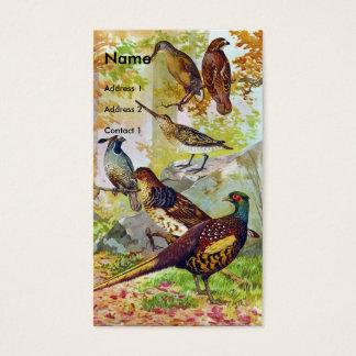Cartão De Visitas Pássaros de jogo