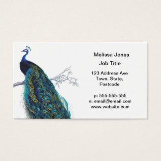 Cartão De Visitas Pavão azul com as penas de cauda bonitas