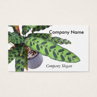 Cartão De Visitas Planta interna