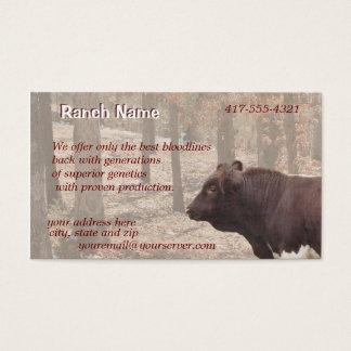 Cartão De Visitas PLBBizCard-personalize como necessário