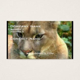 Cartão De Visitas Puma selvagem