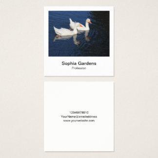 Cartão De Visitas Quadrado Estilo imediato da foto - gansos de Emden