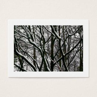 Cartão De Visitas Ramos com neve, mini foto
