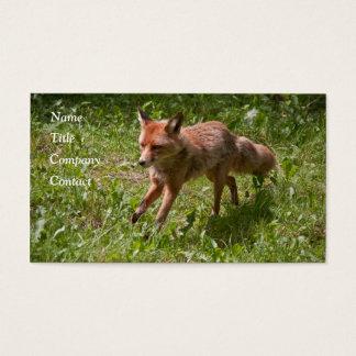Cartão De Visitas Raposa Running