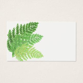 Cartão De Visitas Samambaias verdes
