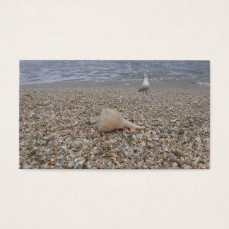 Cartão De Visitas Seashells e gaivota de mar