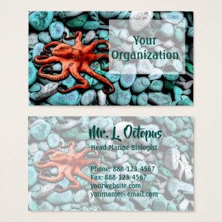 Cartão De Visitas Seixos do polvo